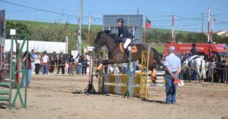 Nos três dias da feira houve provas equestres. Foto: Autarquia de Arruda dos Vinhos